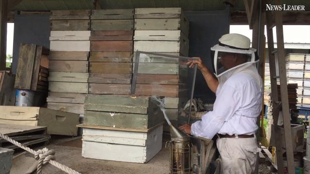 Michael Myer has been raising bees for 45 years.