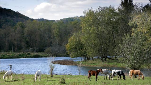 Video: Things to do in the Driftless Region