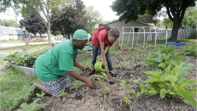 Inspection issues concerning Kim Fruin's eastside urban garden is prompting the city to review its rules.