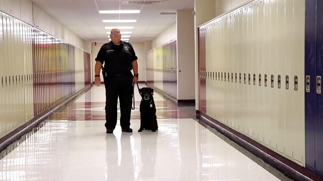 Pulaski Police Officer James Tinlin and his K9 partner, Raider, will retire as a narcotics-detection team in August after serving almost a decade together in the Pulaski Community School District. (July 28, 2017)