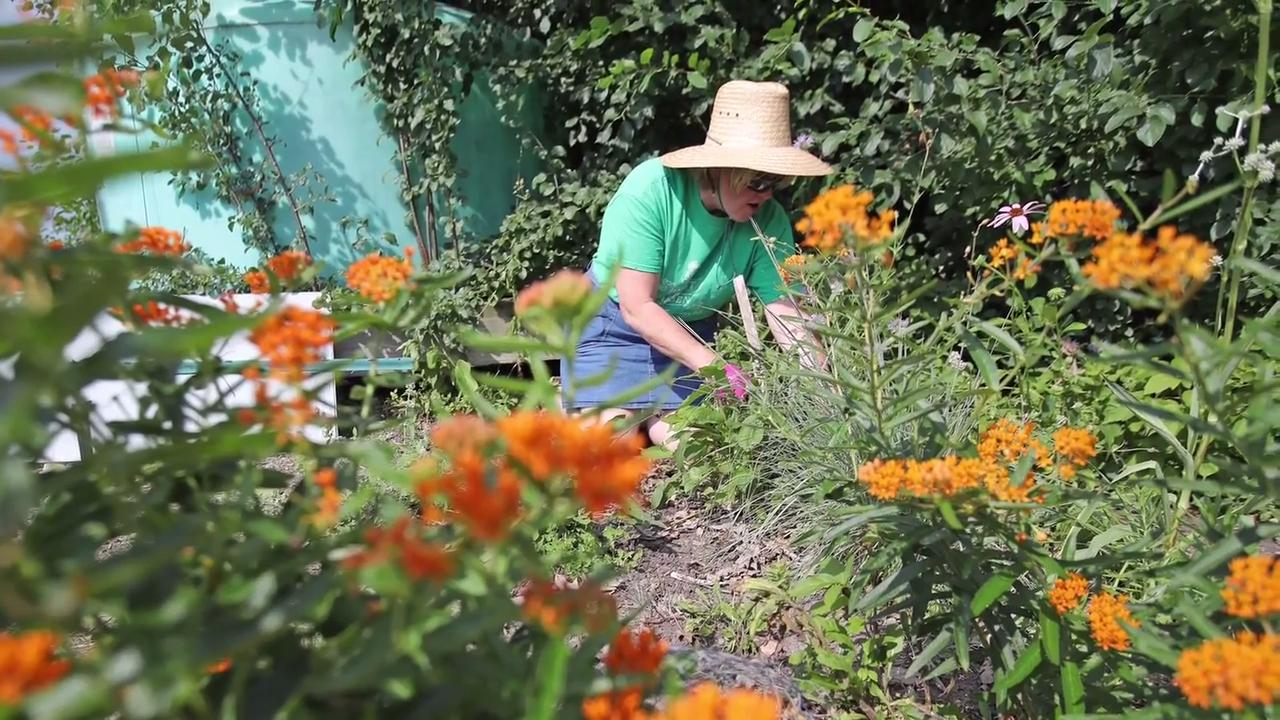 The endowment is meant to not only maintain the gardens program but expand it.