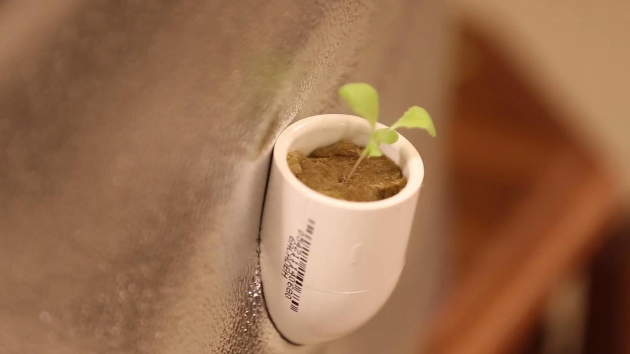 Bradley Seibel shares his prototype for a dirt-less indoor garden.