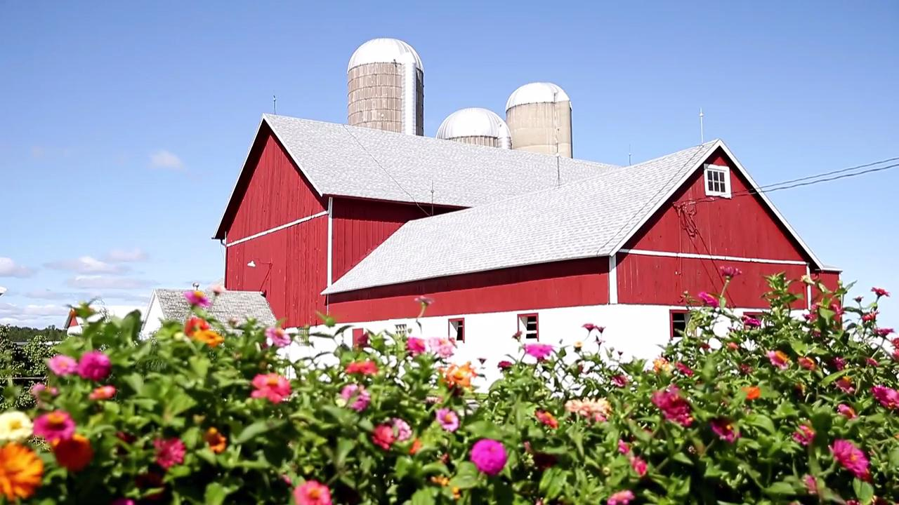 Red Barn Family Farms, a milk and cheese producer, uses small family farms that excel in animal husbandry.