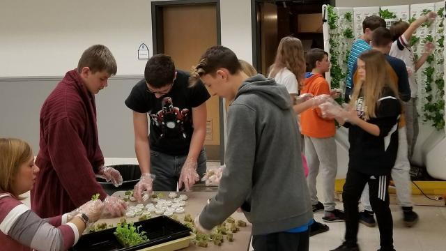 Students at St. John Lutheran School in Plymouth are getting a science lesson and a taste test in fresh produce thanks to a hydroponics system recently installed at the school.