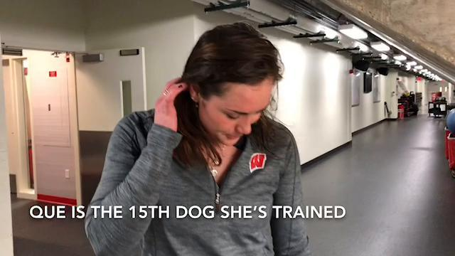 UW hockey player also trains dogs