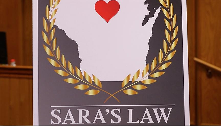 Sara's Law to protect family lawyers