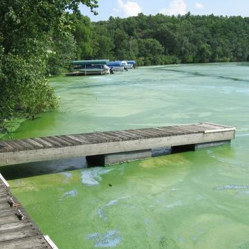 The Department of Natural Resources is targeting phosphorus that flows into the Wisconsin River from Rhinelander south to Lake Wisconsin. Phosphorus has been a contributing factor in fish kills and blooms of toxic blue-green algae.