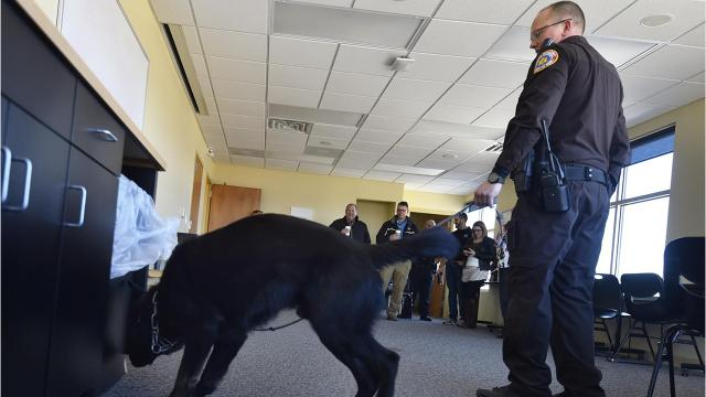 Door County Sheriff Office Deputy Matt Tassoul and his K9 partner, Odinn, demonstrate for community members and police a drug search in Sturgeon Bay Friday, March 2, 2018.