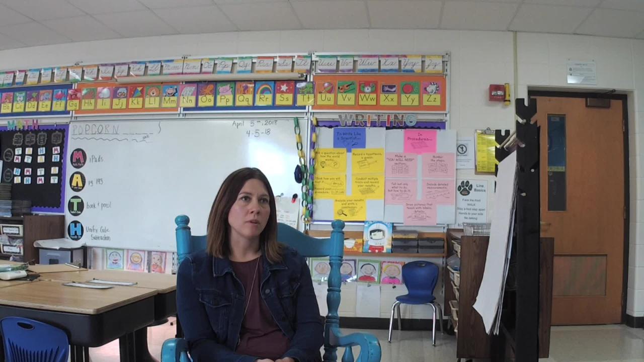 Valley View Elementary second-grade teacher Michelle Loewenhagen is a 2018 Golden Apple winner.