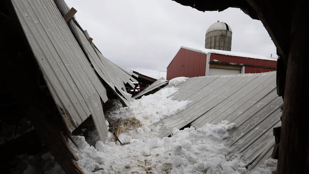 The Yost family farm saw one section of their barn roof collapse trapping a few cows.  The roof collapsed as ice and snow accumulated on the roof.  The Yost family is taking down that section of roof to continue their milking operation.