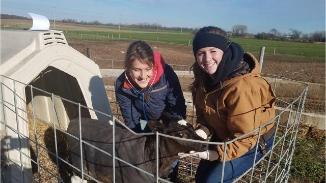 More and more women are pursuing degrees in agricultural fields that were once male-dominated. This gender shift in enrollment is evident at both technical colleges and universities across Wisconsin.