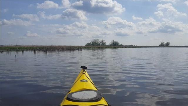Kayak or canoe the marsh to see great blue herons, Canada geese and hundreds of other bird species.