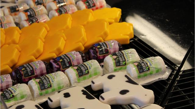 State officials fanned out across the state on June 25, celebrating cheese industry stakeholders during the Wisconsin Cheese Day tour.
