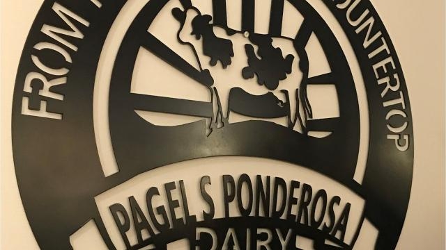 Farm School is part of the 2018 Vita Plus Calf Summit that allowedcalf raisers, heifer managers, feed consultants and dairymen to tour Pagel's Ponderosa Dairy's calf ranch in Kewaunee, WI.