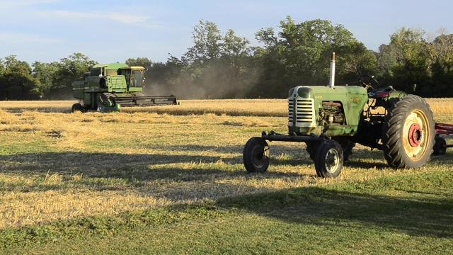Farming wheat in Woodville