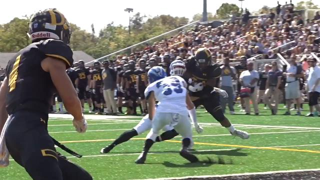 Newark graduate Grant Russell threw for 381 yards in Ohio Dominican's 41-27 victory against Hillsdale.