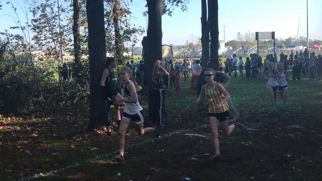 Heath's Chandler Wilhelm and Watkins Memorial's Andrea Kuhn were the overall winners at the Licking County League meet.