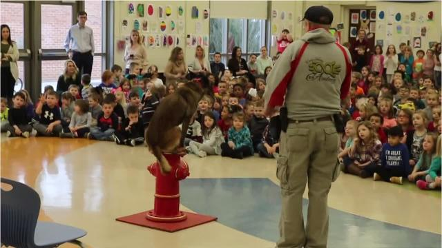 On Wednesday, the Erie Shores K-9 Academy visited Bataan Primary School, which gathered donations for the Humane Society of Ottawa County.
