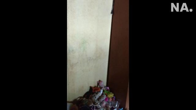 Video taken by the Licking County Humane Society in August 2017 shows the conditions of two trailers where Toni Lichwa and Howard McNemar lived with their 4-year-old daughter and more than 60 animals.