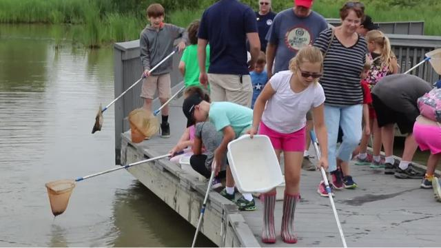 """Area children are getting the chance to trek out on an """"Aqua Adventure"""" at the Ottawa National Wildlife Refuge this week and throughout the summer."""