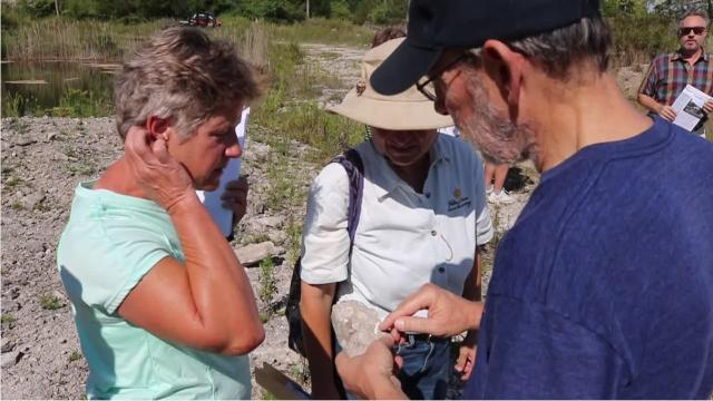 The rich natural history to be explored at the new Ed Curilla Preserve on Kelleys Island ranges from 400-million-year-old fossils to rare native species found today.