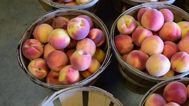 Watch: It's a great season for peaches
