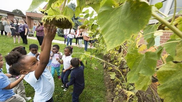 Garden gives kids hands-on experience