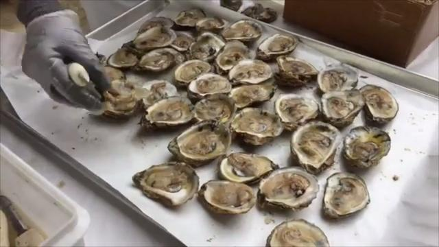 Food, music, history is History on the Half Shell