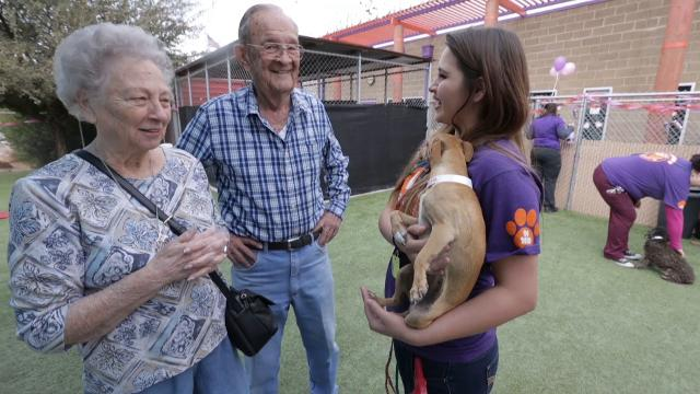 Animal Services kicked off their first adoption event of the year with Lucky in Love which included speed dating, a doggie kissing booth and pup cakes for the dogs.