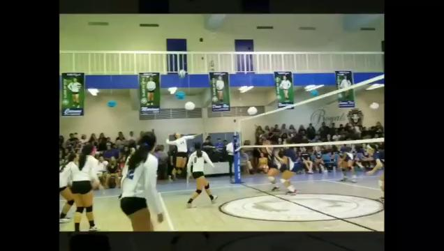 Royals defeat Cougars in volleyball semifinal
