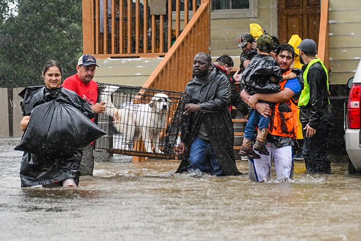 VIDEO- Volunteers and First Responders Rescue Residents in Houston
