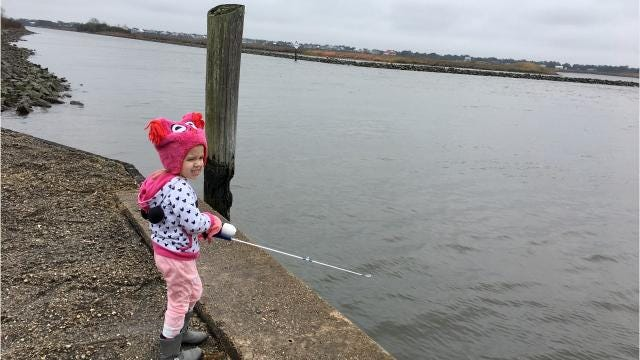 What families can do at Cypremort Point State Park