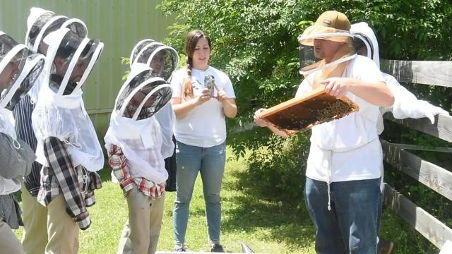 Studying bee hives at St. John Berchmans School in Grand Coteau