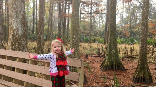 My family went to every Louisiana state park