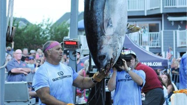 WATCH: $2 8 million in White Marlin Open winnings goes to 13 anglers