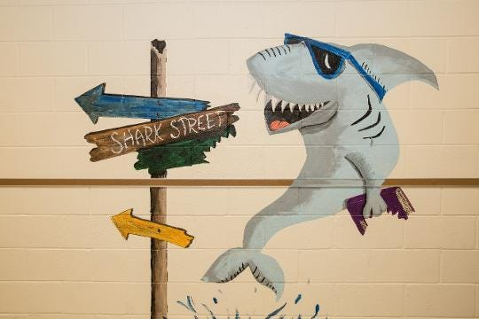 WATCH: Woodson teacher paints murals throughout Crisfield