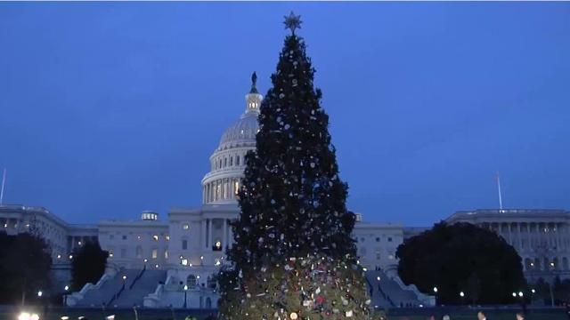 Senator Jon Tester sends a letter requesting the Montana-sourced Capitol Christmas tree return to the state to help rebuild Glacier National Park's Sperry Chalet.