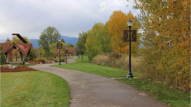 Besides environmental, recreational and ornamental value, urban forests provide economic savings you may not have considered, according to the Montana Department of Natural Resources and Conservation.