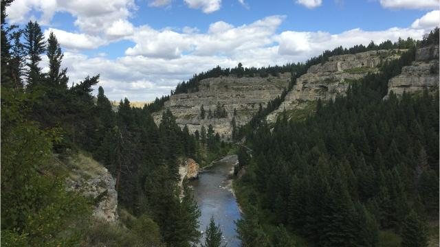 Soaring cliffs and precipitous ledges mark the Belt Creek Canyon as it slices out of the Little Belt Mountains.