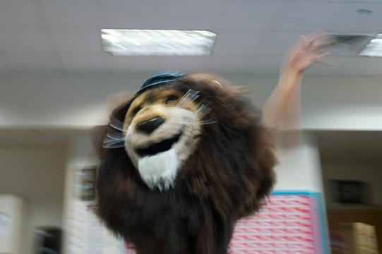 Students vie to become the new Roary mascot