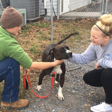 Dalton Aaron, of Staunton, is reunited with his dog, Hooey, after over two years apart.