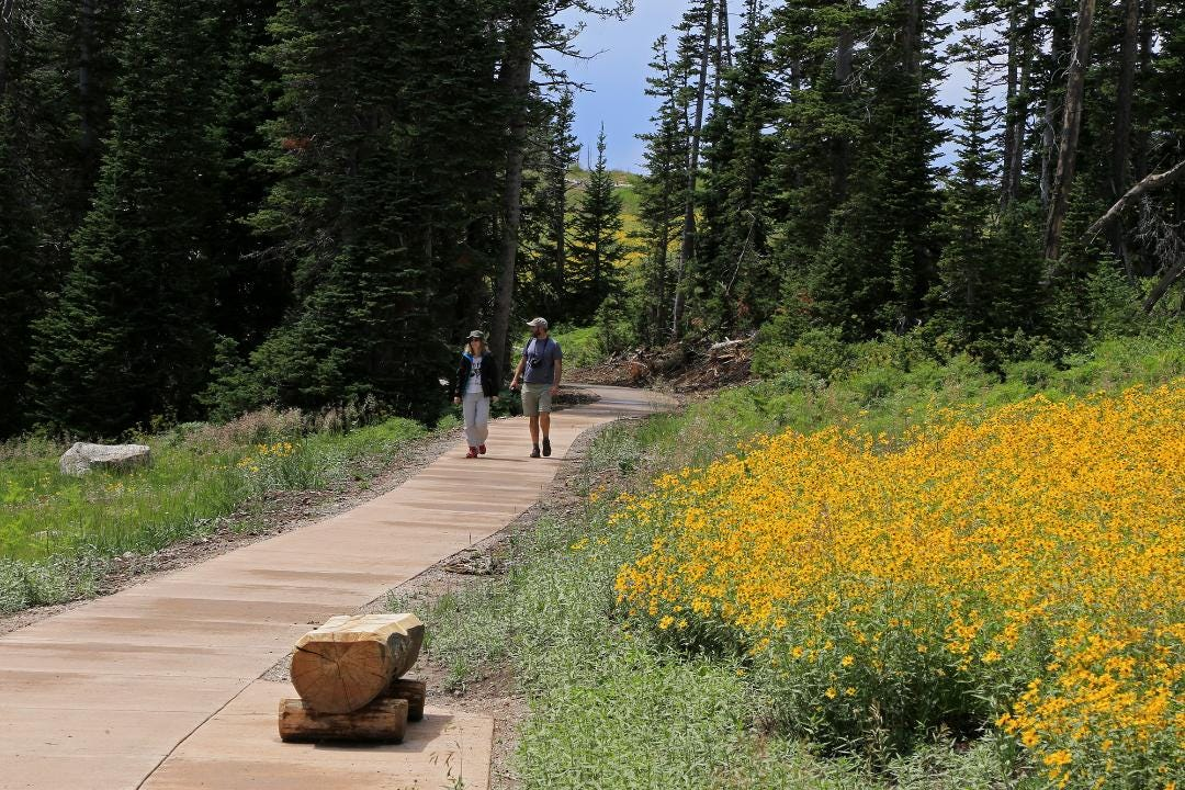 The new mile-long Sunset Trail at Cedar Breaks National Monument is ADA-ABA accessible and parallels Utah Route 148.