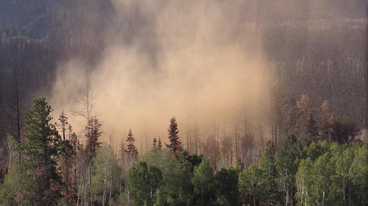 Richard Jaros, ecosystem staff officer for the Dixie National Forest, talks about rehabilitating the area after the Brian Head fire, Wednesday, August 30, 2017.
