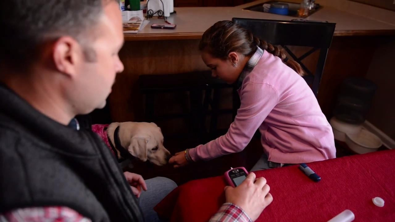 Matt and Cara Manns, parents of Haley Manns, talk about their daughter's diagnosis and the benefits her new service dog, Mavis, will bring to her and their family.