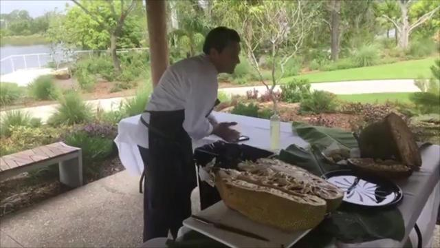 Naples Botanical Garden hosts 'Tropical Fruits of the Summer' festival