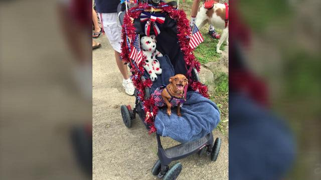Images from the 23rd annual July 4 Neighborhood Parade in Santa Rita