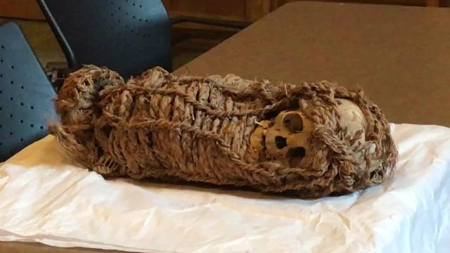 2,000-year-old mummy gets X-ray at Corpus Christi hospital