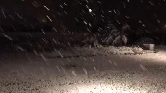 A winter storm delivered a rare blanket of snow in Corpus Christi overnight on Friday, Dec. 8, 2017.