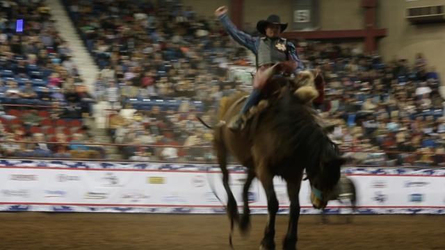 Audy Reed rides a bronc at San Angelo Rodeo Saturday, Feb. 10.