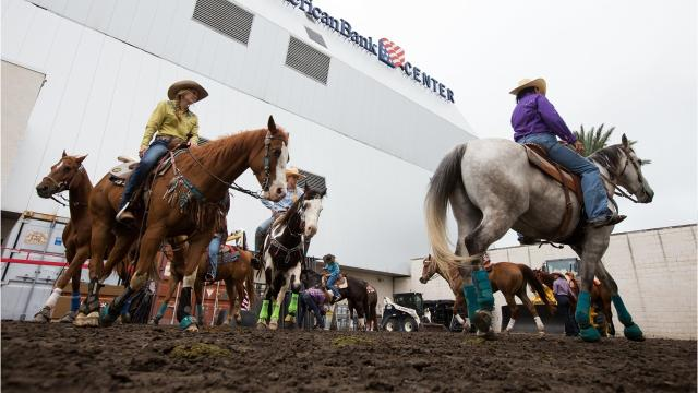Buc Days Rodeo 2018 will be from April 26-29 at the American Bank Center.